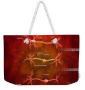 Anatomy Structure Of Neurons Weekender Tote Bag by Stocktrek Images