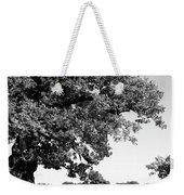 Ancient Oak, Bradgate Park Weekender Tote Bag