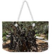 Ancient Olive Tree Weekender Tote Bag
