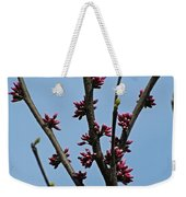 And It Came As Though A Child Burst Into The Room Weekender Tote Bag