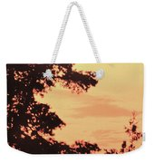 And Then A Loon Called Weekender Tote Bag