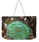 Anemone Of Mine... Weekender Tote Bag