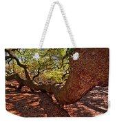 Angel Oak Tree 003 Weekender Tote Bag