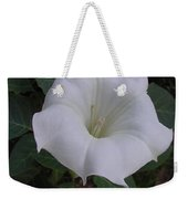 Angel Trumpet - Color Weekender Tote Bag