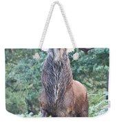 Angry Stag Weekender Tote Bag