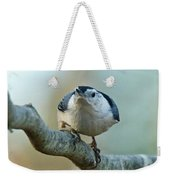 Angry White Breasted Nuthatch Weekender Tote Bag