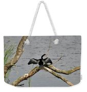 Anhinga And Alligator Weekender Tote Bag