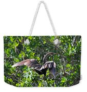 Anhinga In The Sun Weekender Tote Bag