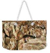 Animal - Squirrel - The Squirrel Weekender Tote Bag