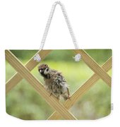 Animal Children Weekender Tote Bag
