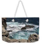 Animal Flower Bay #12 Weekender Tote Bag by PJ Boylan