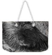Animal T-shirt - B Weekender Tote Bag