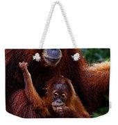 Animals 2 Weekender Tote Bag