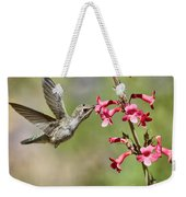 Anna's Hummingbird And The Penstemon  Weekender Tote Bag