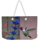 Anna's Hummingbird Feasting At Blue Salvia Weekender Tote Bag