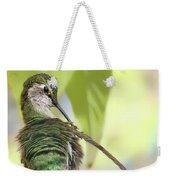 Anna's Hummingbird - Preening Weekender Tote Bag