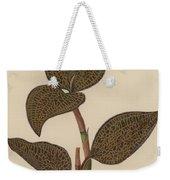 Anoectochilus Setaceus, Aurea Weekender Tote Bag