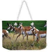 Antelope 1 Weekender Tote Bag