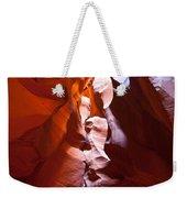Antelope 12 Weekender Tote Bag