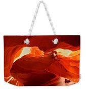 Antelope Aglow Weekender Tote Bag