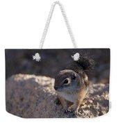 Antelope Swirl  Weekender Tote Bag