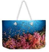 Anthias Fish And Soft Corals, Fiji Weekender Tote Bag