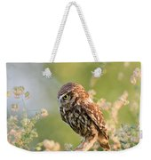 Anticipation - Little Owl Staring At Its Prey Weekender Tote Bag