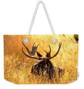 Antlers In The Golden Grass Weekender Tote Bag