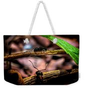 Ants Adventure Weekender Tote Bag by Bob Orsillo
