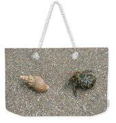 Anybody Home? Weekender Tote Bag