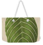 Aphelandra Leopoldii  Weekender Tote Bag