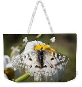 Apollo Butterfly Weekender Tote Bag