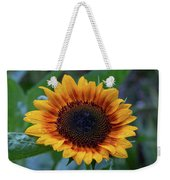 Apollo's Ring After The Rain Weekender Tote Bag