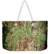 Appalachian Arbor Flora Weekender Tote Bag