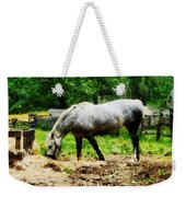 Appaloosa Eating Hay Weekender Tote Bag