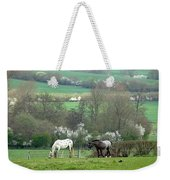 Appaloosa In May Weekender Tote Bag