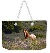 Appaloosa Mustang Horse Weekender Tote Bag
