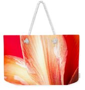 Apple Amaryllis Red Apple Amaryllis On A Pink And Yellow Background Weekender Tote Bag