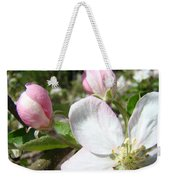 Apple Blossom Artwork Spring Apple Tree Baslee Troutman Weekender Tote Bag