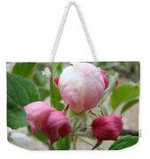 Apple Blossom Buds Art Prints Spring Baslee Troutman Weekender Tote Bag