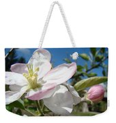 Apple Blossoms Art Prints Canvas Blue Sky Pink White Blossoms Weekender Tote Bag