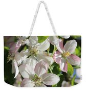 Apple Blossoms Square Weekender Tote Bag
