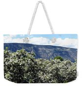 Apple Blossoms Weekender Tote Bag by Will Borden