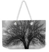 Apple Tree Bw Weekender Tote Bag