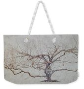 Apple Tree In Winter Weekender Tote Bag by Leah  Tomaino