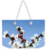 Apricot Blossoms Weekender Tote Bag