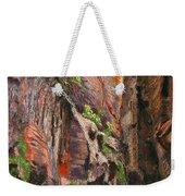 Apricot Canyon 2 Weekender Tote Bag