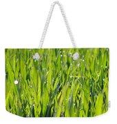 April Dewdrop Fairylights Weekender Tote Bag