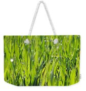 April Dewdrop Fairylights Weekender Tote Bag