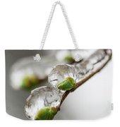 April Ice Storm 5 Weekender Tote Bag